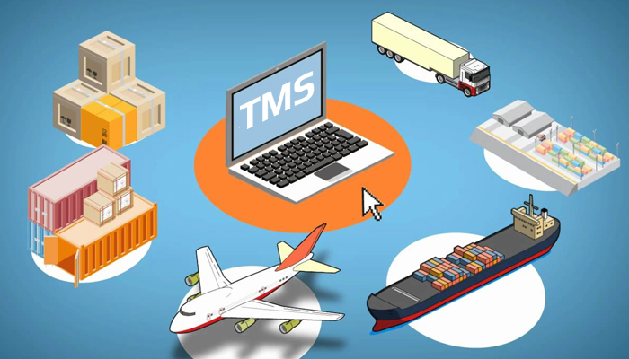 Phần mềm TMS là gì?
